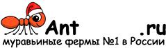 Муравьиные фермы AntFarms.ru - Владимир